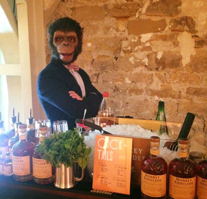 ANIMATION MONKEY-SHOULDER