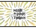 Photo TOURAINE -DOMAINE DES GRANDES ESPERNANCES - 2014 - Bistrot bleriot