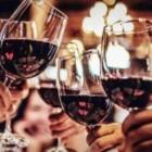 Cours d'oenologie : Comment analyser et comprendre un vin : le BA-ba .