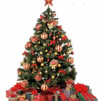 Ouverture Exceptionnelle le Jour de Noël.