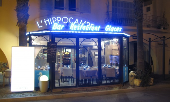 Photo Hippocampe