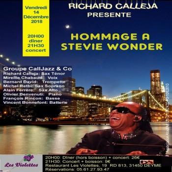 Jazz aux Violettes : Hommage à Stevie Wonder