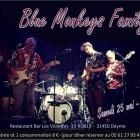 Concert : Blue Monkeys Family