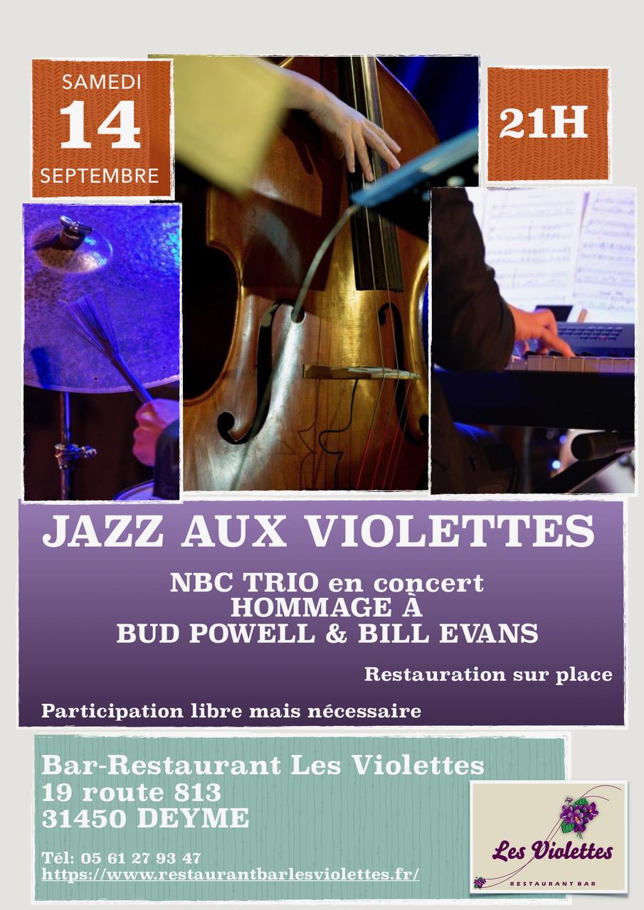 Jazz Aux Violettes _ NBC TRIO en concert