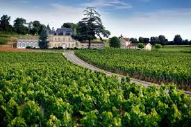 Dégustation de vins du Bordelais