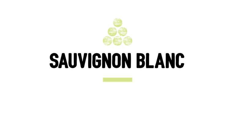 Dégustation oenologique : Sauvignon blanc, cépage à redécouvrir