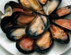 Photo Raw mussels (12)  - Le Saint Clair