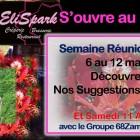 EliSpark s'ouvre au Monde : Ile de la Réunion