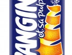 Photo ORANGINA - Kokeshi