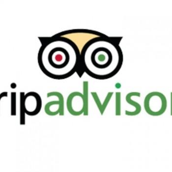 Fiche TripAdvisor