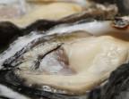 Photo Huître spéciale de l'Île St-Martin (Salins de Gruissan) n°3/2 - Saveurs Salines