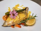 Photo Turbot Sauvage, sauce au Safran de Sarrians - Saveurs Salines