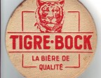 Photo Tigre Bock - Le Nordmarais