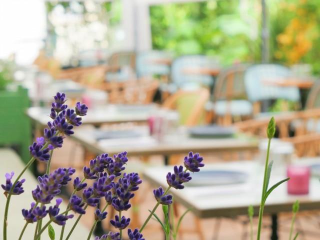 img Les Belles Plantes