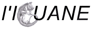 Logo L'Iguane