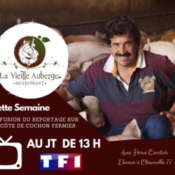 REPORTAGE JT 13H TF1