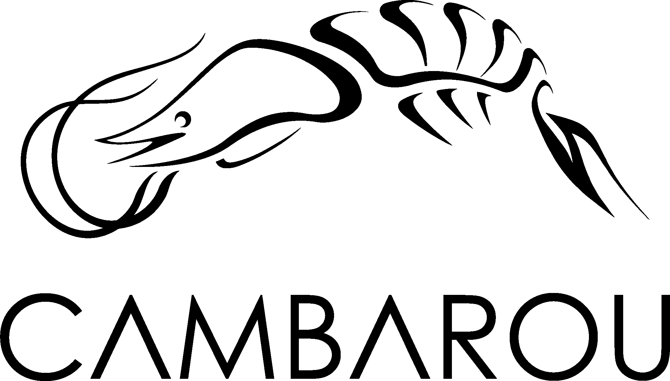 Logo CAMBAROU
