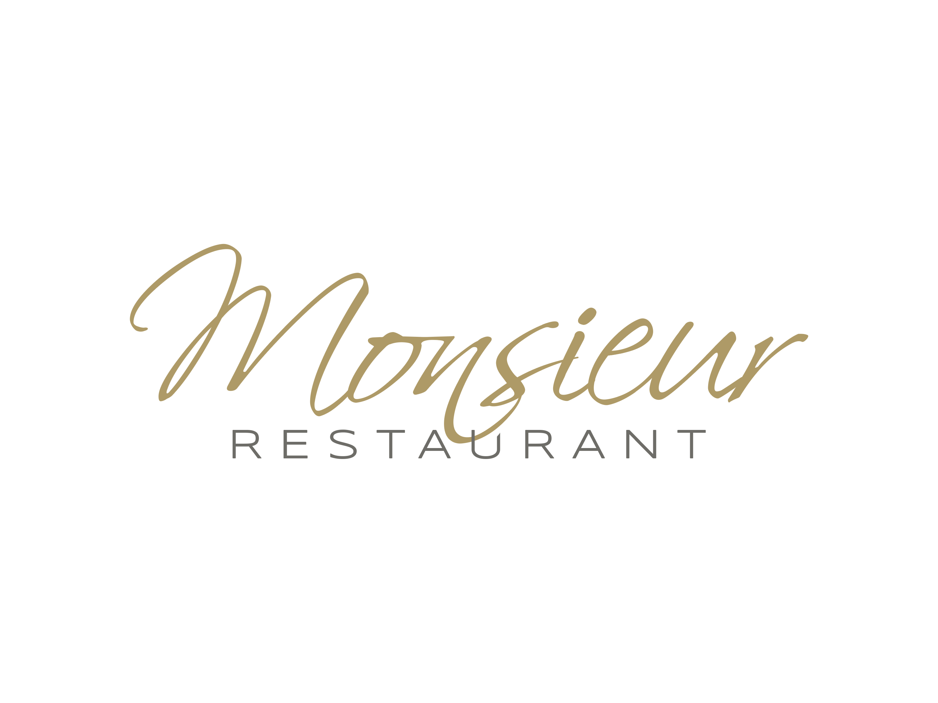 Logo Monsieur Restaurant