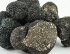 Photo Truffe fraiche 50 gr   - Et Toque